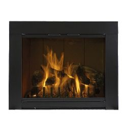 Grande Standard Masonry Fireplace Glass Door