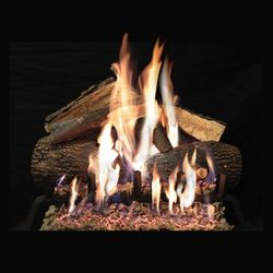 Empire Advantage Vented Gas Log Set