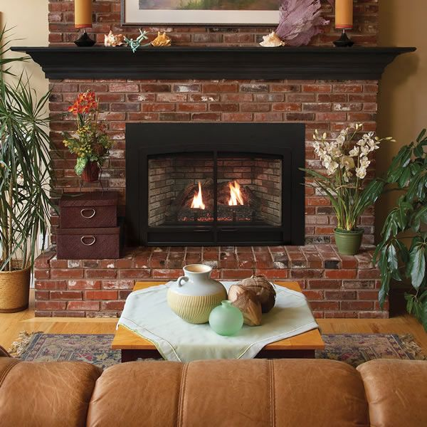 Empire DVC20 Innsbrook Traditional Direct Vent Gas Insert image number 0