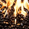 Krystal Fire Gem Black Fire Glass - 10 lbs.