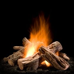 Hargrove Wilderness Split Outdoor Gas Log Set