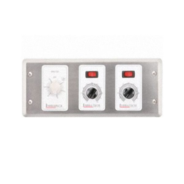 Infratech 1-Zone Remote Analog Control with Timer image number 0
