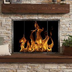 Hamilton Masonry Fireplace Glass Door