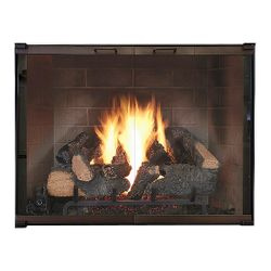 Legend Elite Masonry Fireplace Glass Door