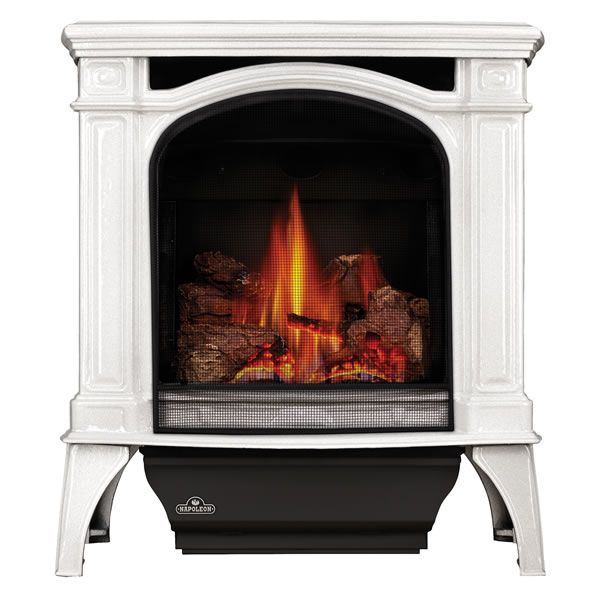 Napoleon GDS25 Bayfield Direct Vent Gas Stove - Winter Frost image number 0