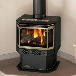 Napoleon GDS28 Haliburton Direct Vent Gas Stove