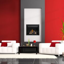Napoleon HD40 High Definition Direct Vent Gas Fireplace