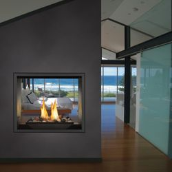 Napoleon High Definition 81 See-Thru Direct Vent Fireplace