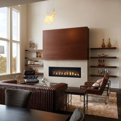Napoleon LV62 Vector 62 Direct Vent Gas Fireplace