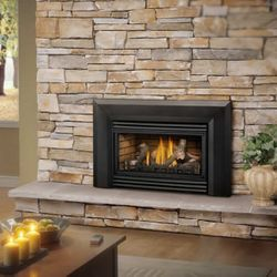 Napoleon Roxbury GDI-30 Direct Vent Gas Fireplace Insert