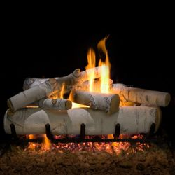 Sierra Birch See Through Vented Gas Log Set