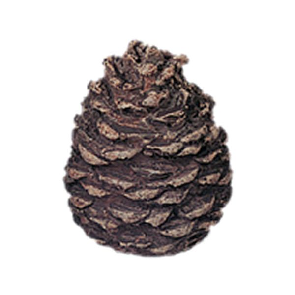 Rasmussen Refractory Ceramic Pine Cone - Large Flat image number 0