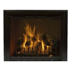 Reflection Custom Masonry Fireplace Glass Door
